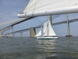 Sailing under the Bay Bridge