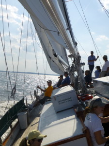 Perfect day for sailing fast