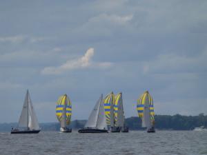 Navy 44s