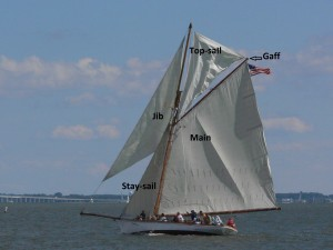 Sloop with gaff main, main top-sail, jib stay-sail, and jib.