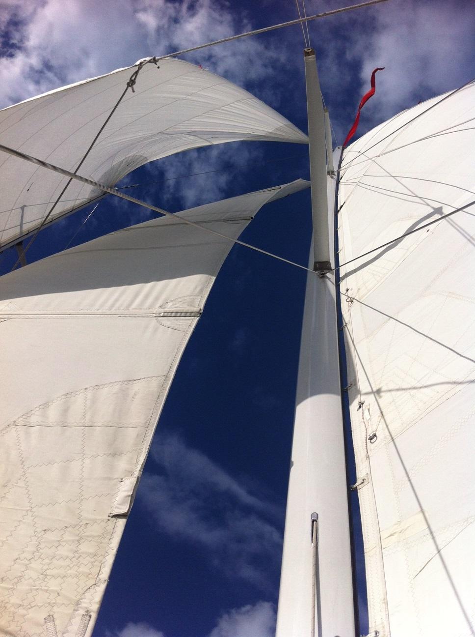 The-Woodwind-Mast-Sails