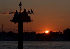 Scenic views of the Chesapeake Bay
