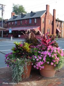 Historic downtown Annapolis