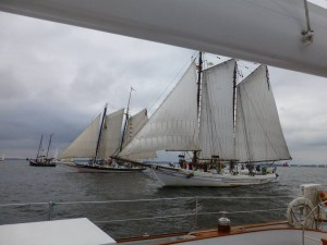 The start of the Schooner Race 2014.