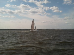 Trimaran sailing the Chesapeake, way faster than the Woodwind