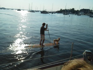Paddle Boarding with your dog in Annapolis