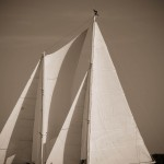 Black and white sails and sky