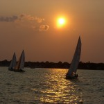 Sails in the golden sunset