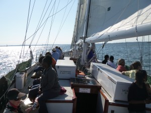 A Fun Day of sailing on the Woodwind