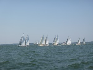 Race start for the J-105 fleet for the Hospice Cup in Annapolis