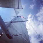 White sails and blue skies