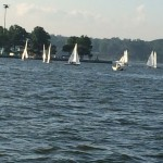 Small white sailboats on the blue Chesapeake