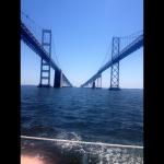 Sailing under the Bay Bridge on a sunny blue sky day