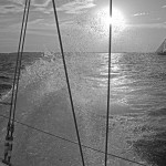 Black and white salt water spraying from boat into the sun