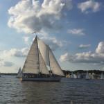 Schooner sailing among many sailboats on the bay