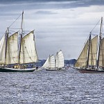 Variety of Schooners at the start of The Great Chesapeake Bay Race