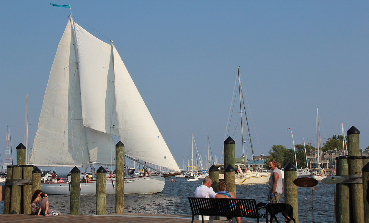 Schooner coming in to docks in Annapolis