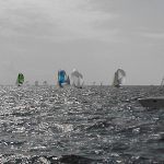 Sailboats with colorful Spinnaker Sails with sunlight sparkling on waves