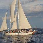 One of the schooners full of guests sailing away