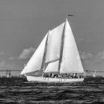 Black and white photo of the Schooner sailing in front of Bay Bridge