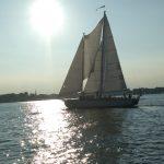 Woodwind II sailing in sun reflecting off of water