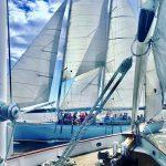 One schooner passing another schooner with guests waving